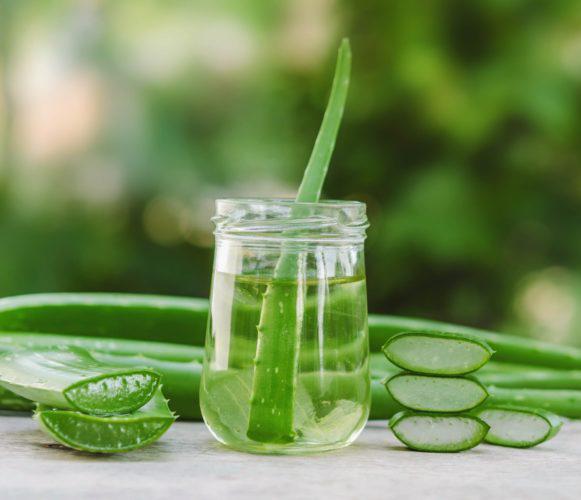 Aloe Vera je skvělým pomocníkem na podrážděnou a spálenou pokožku od sluníčka. Aloe vera ve skleničce.
