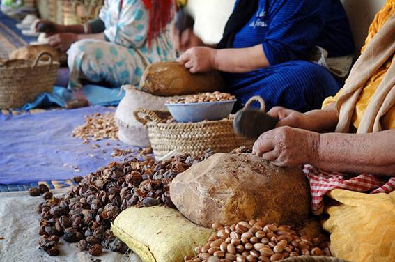 Tradiční výroba arganového oleje v Maroku.
