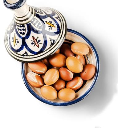 Arganové boby v misce. Arganový olej a jeho benefity pro pleť