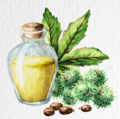 Ricinový olej na pleť i tělo
